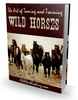HOT! - The Art of Taming and Training Wild Horses with PLR