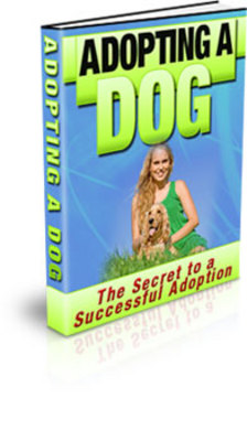 Product picture How to Adopting a Dog with PLR