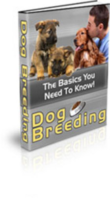 Product picture HOT! - Dog Breeding with PLR